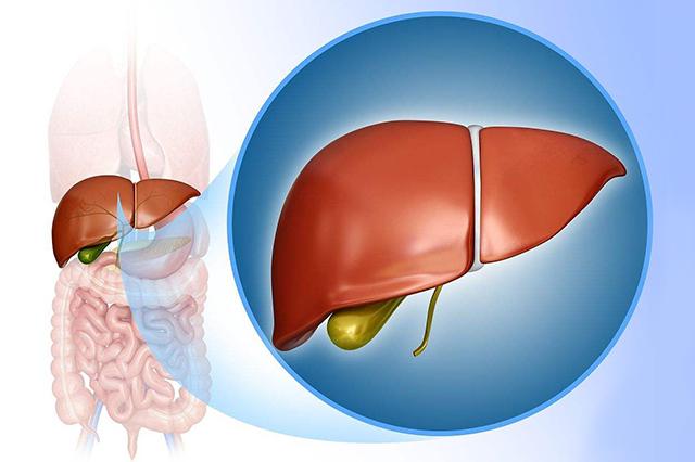 中医博士刘自力:哪些食物可以抗癌?预防癌症饮食指南